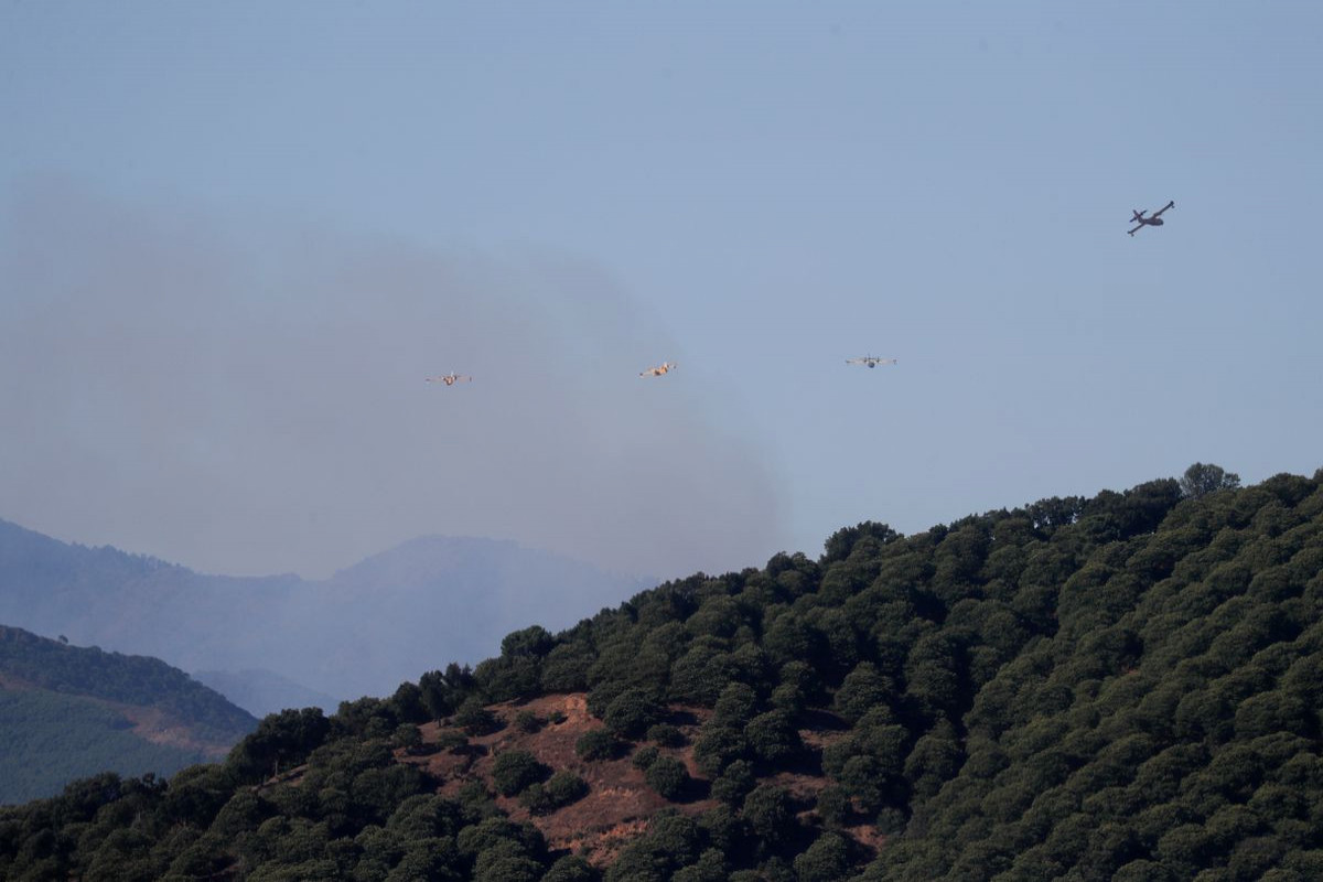 Strong winds, high temperatures fuel wildfire near Spanish resort