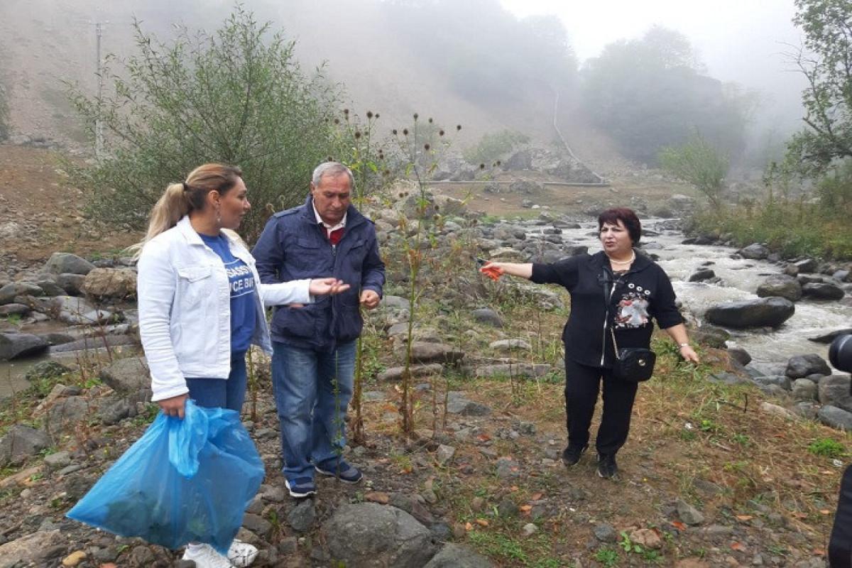AMEA: Göygöl Milli Parkında bəzi bitkilərin arealları daralıb
