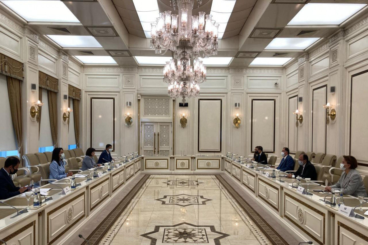 OIC Ombudsmen Association delegation meets with Speaker of Azerbaijani Parliament