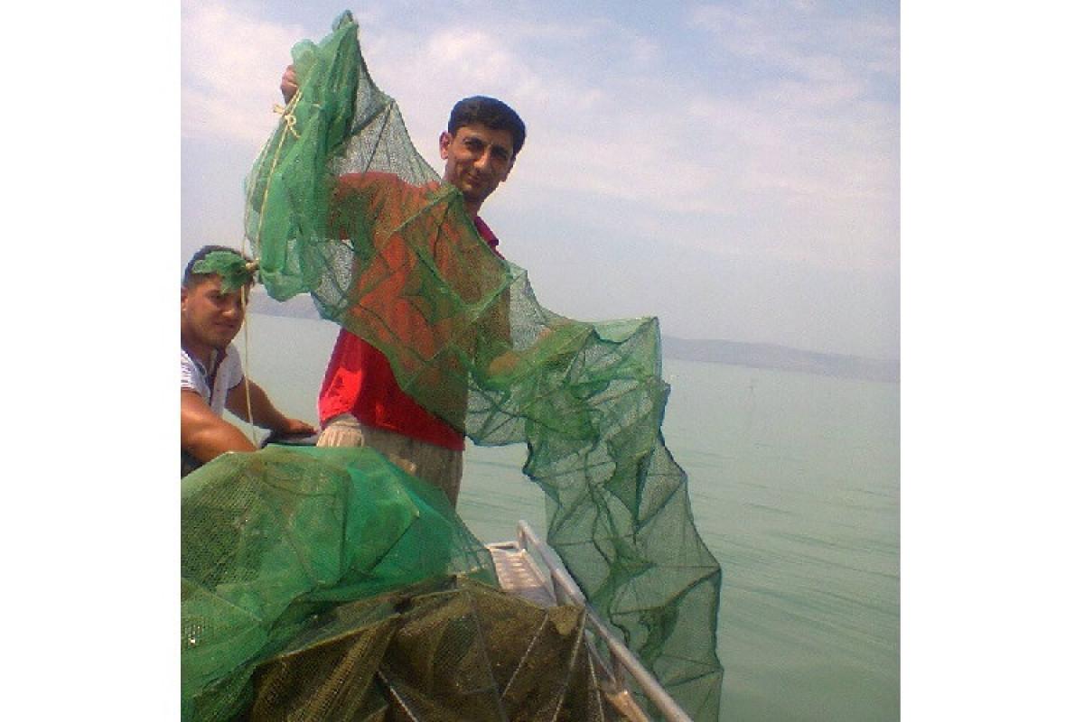 Mingəçevir su anbarında balıq ovuna nəzarət artırılıb - FOTO