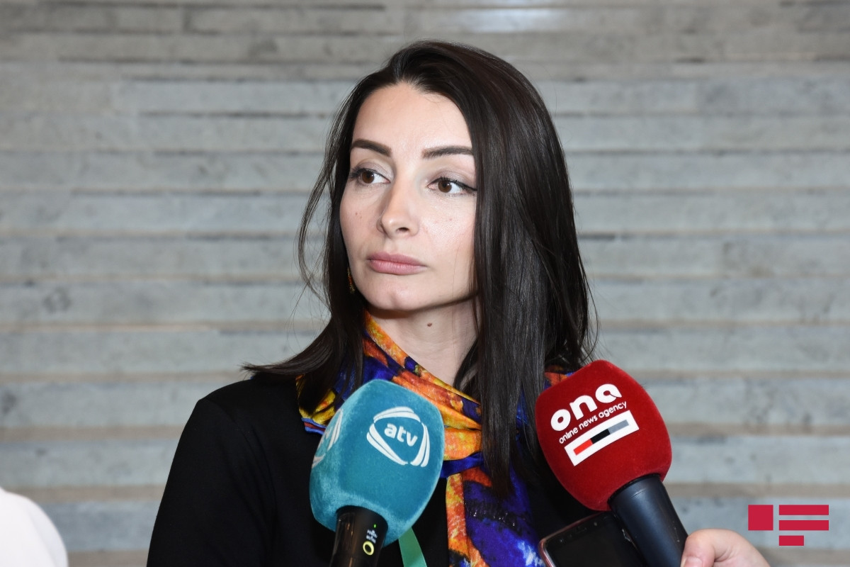 """Leyla Abdullayeva: """"Azerbaijan will bring legal proceedings to hold Armenia to account for systematic violations of the ICERD"""""""