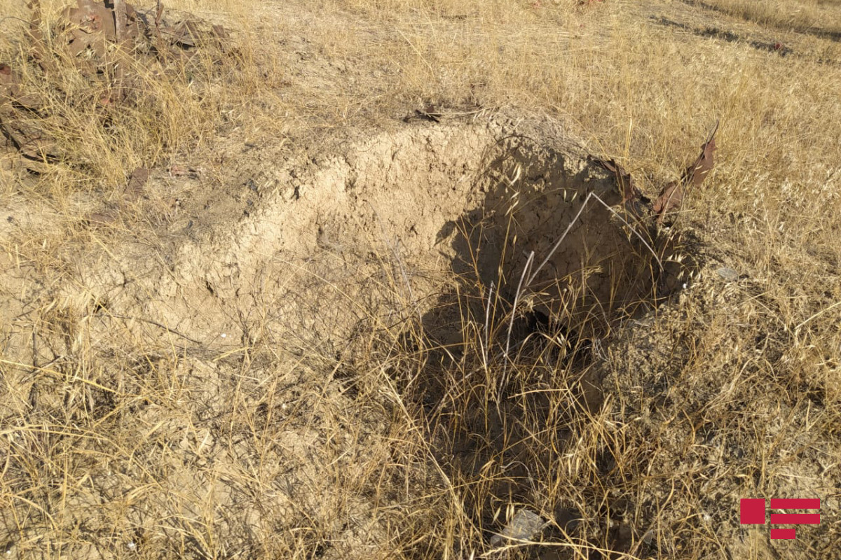 EU special representative was informed about vandalism acts conducted by Armenians in Agdam Alley of Martyrs