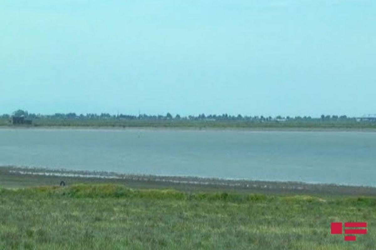 В парламенте будет создана комиссия по восстановлению озера Гаджигабул