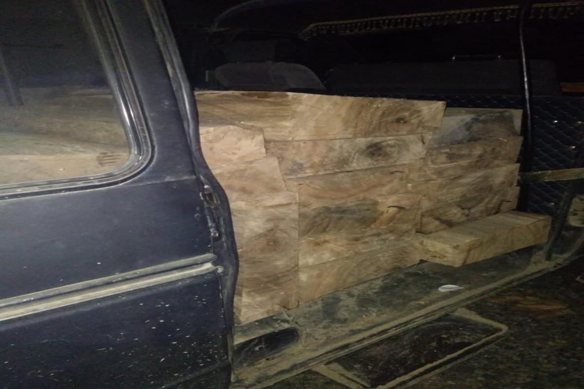 ETSN: Lənkəranda avtomobillərlə qanunsuz meşə materiallarının daşındığı müəyyən olunub