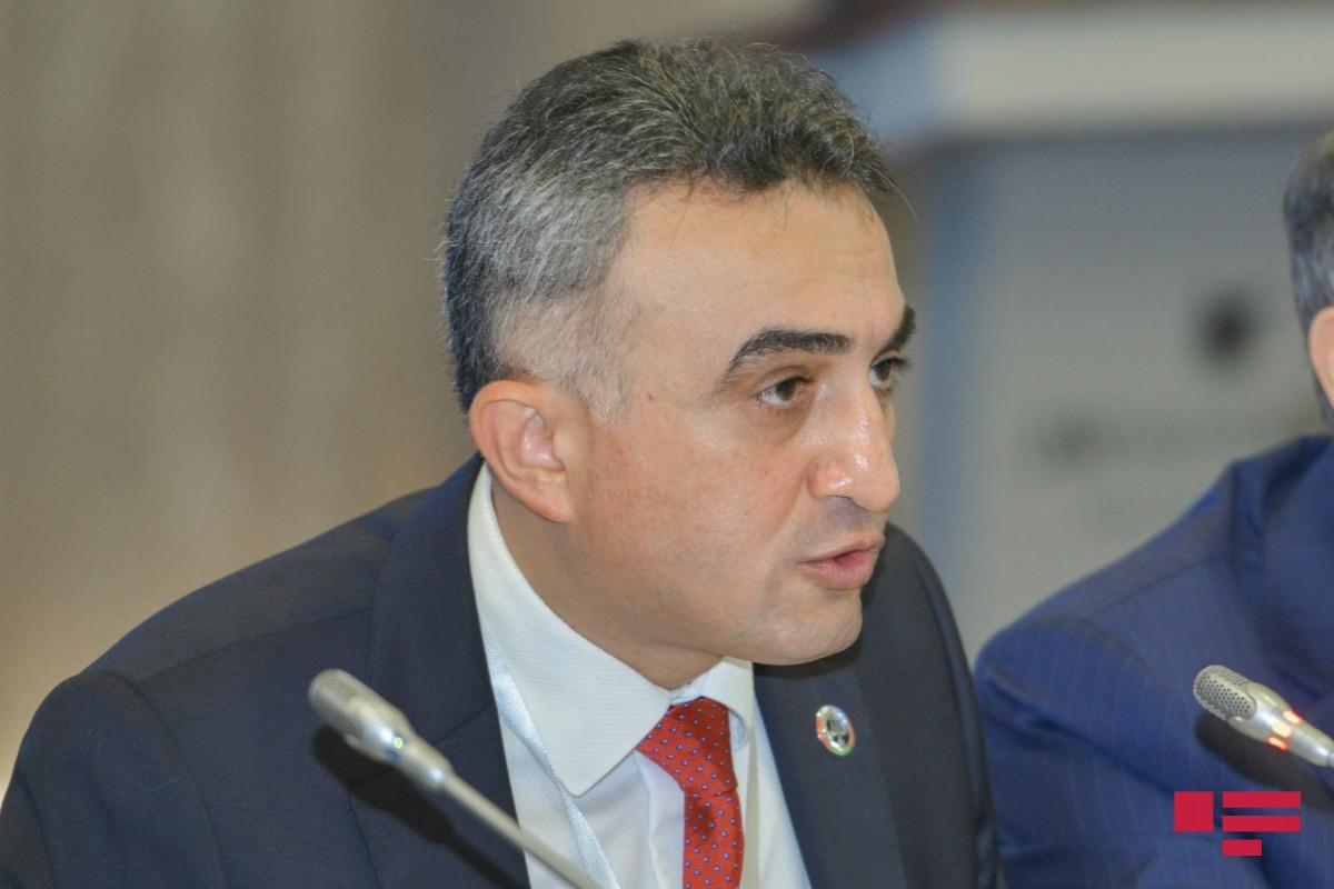 Анар Багиров подверг критике суды и судей