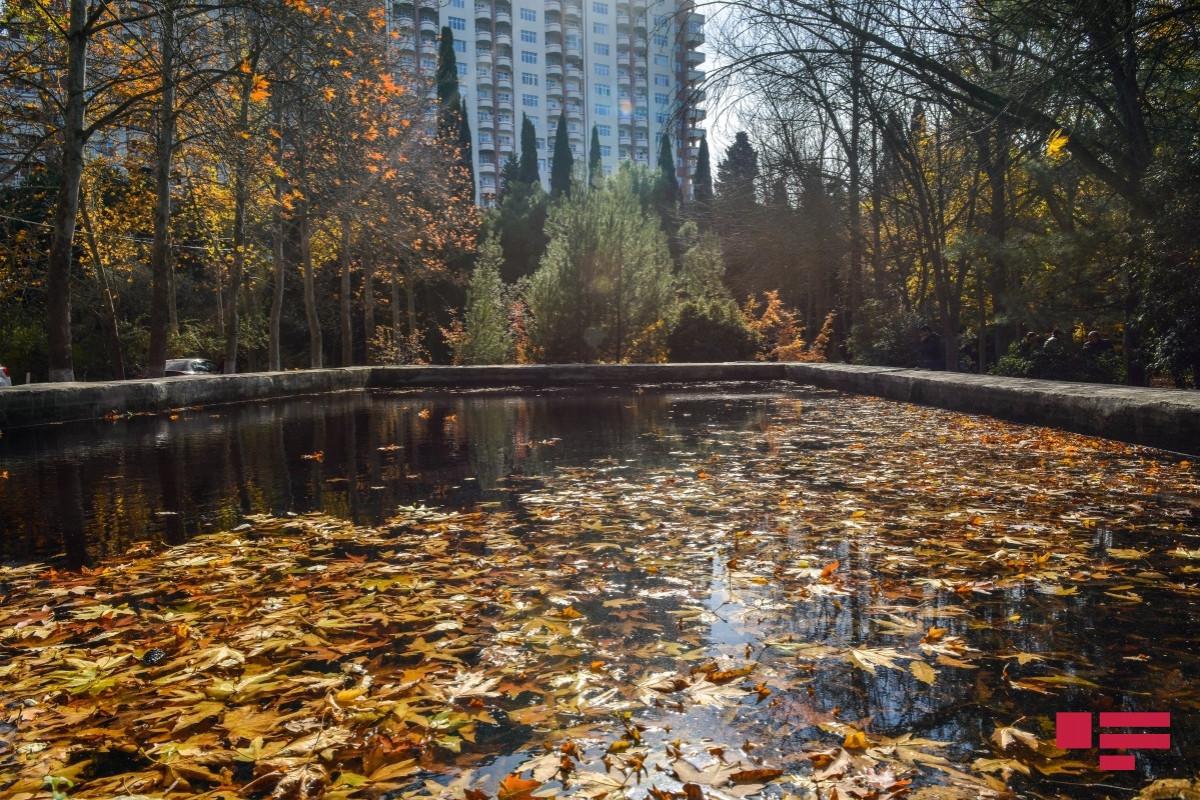 В Азербайджане наступила осень