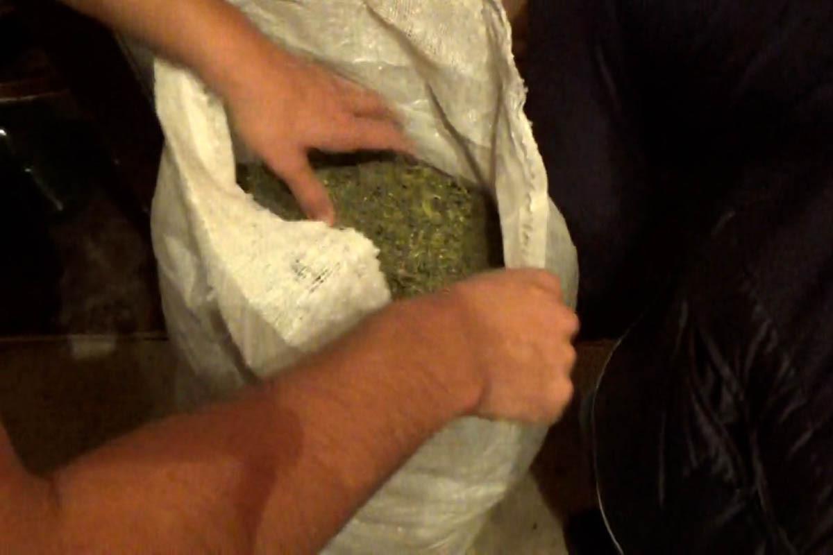 Sosial şəbəkələrdə onlayn yolla narkotik satışı təşkil edən narkokuryerlər tutulub - VİDEO