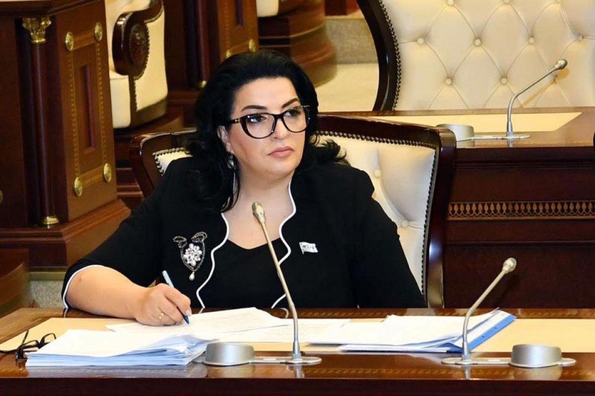 """Deputat: """"Azərbaycan Prezidenti regionda davamlı sülh istədiyimizi bir daha dünyaya çatdırdı"""""""