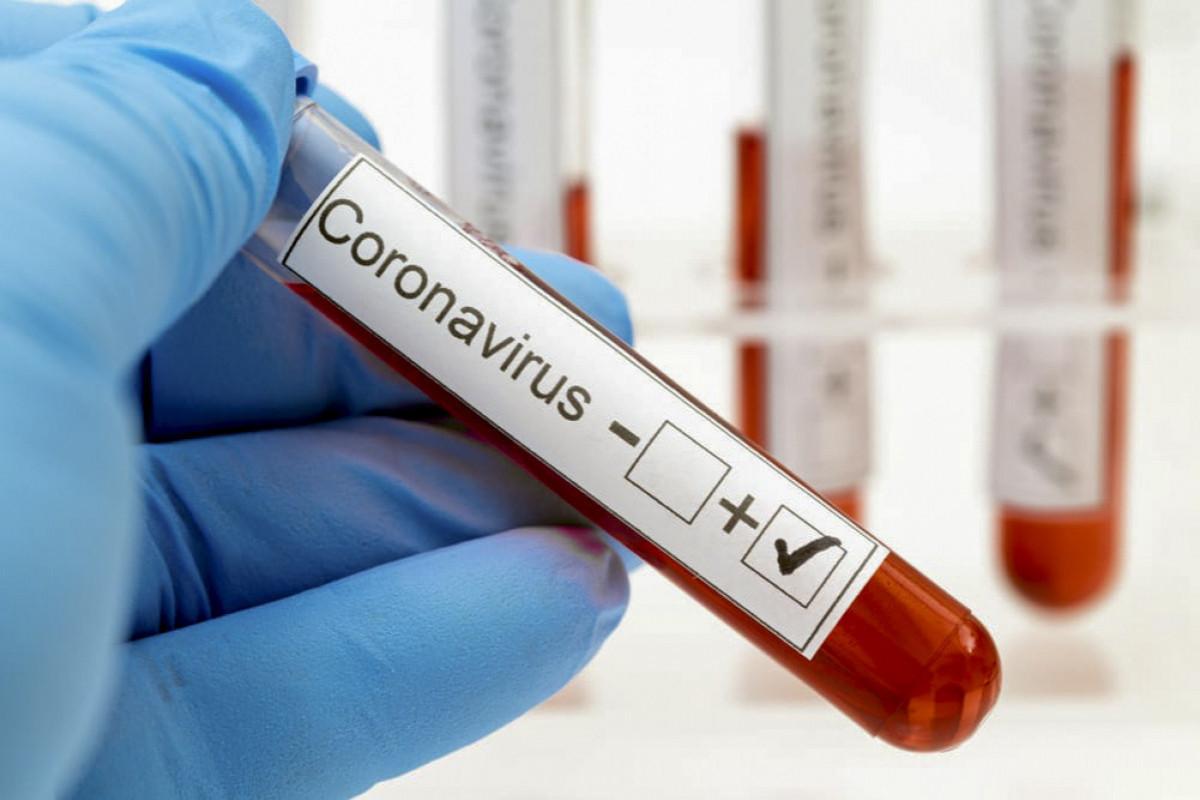 Обнародован процент заражения коронавирусом по стране