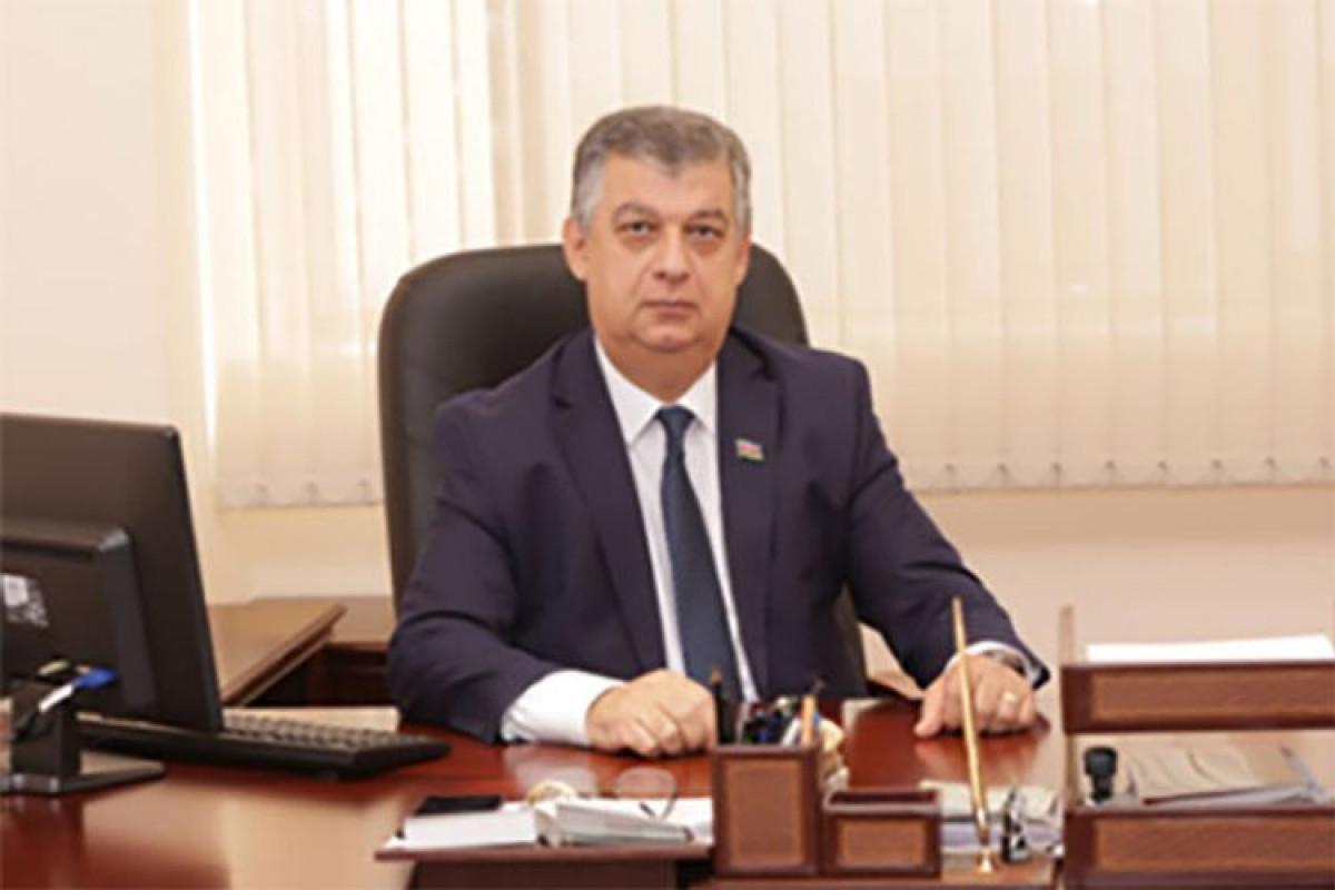 Əli Məsimli, Milli Məclisin İqtisadi siyasət, sənaye və sahibkarlıq komitəsinin sədr müavini